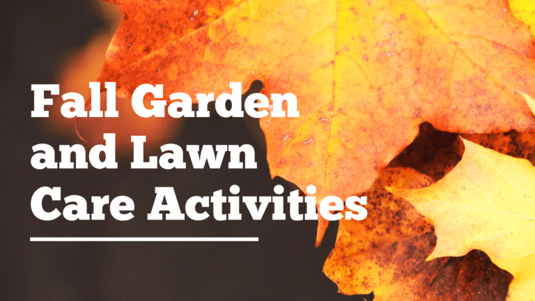 Fall Gardening and Lawncare Activities